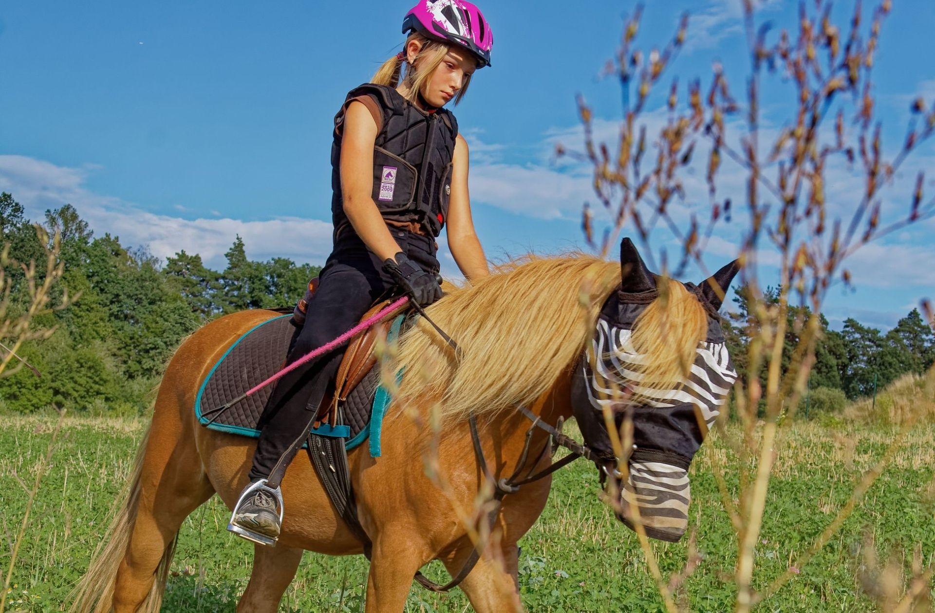 Víkendové akce u koní a putovní výlety