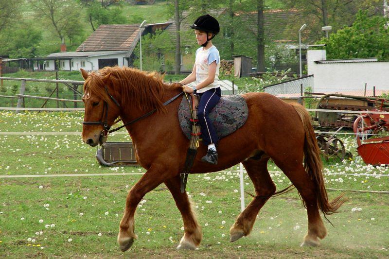 Putujeme na koni i na voze