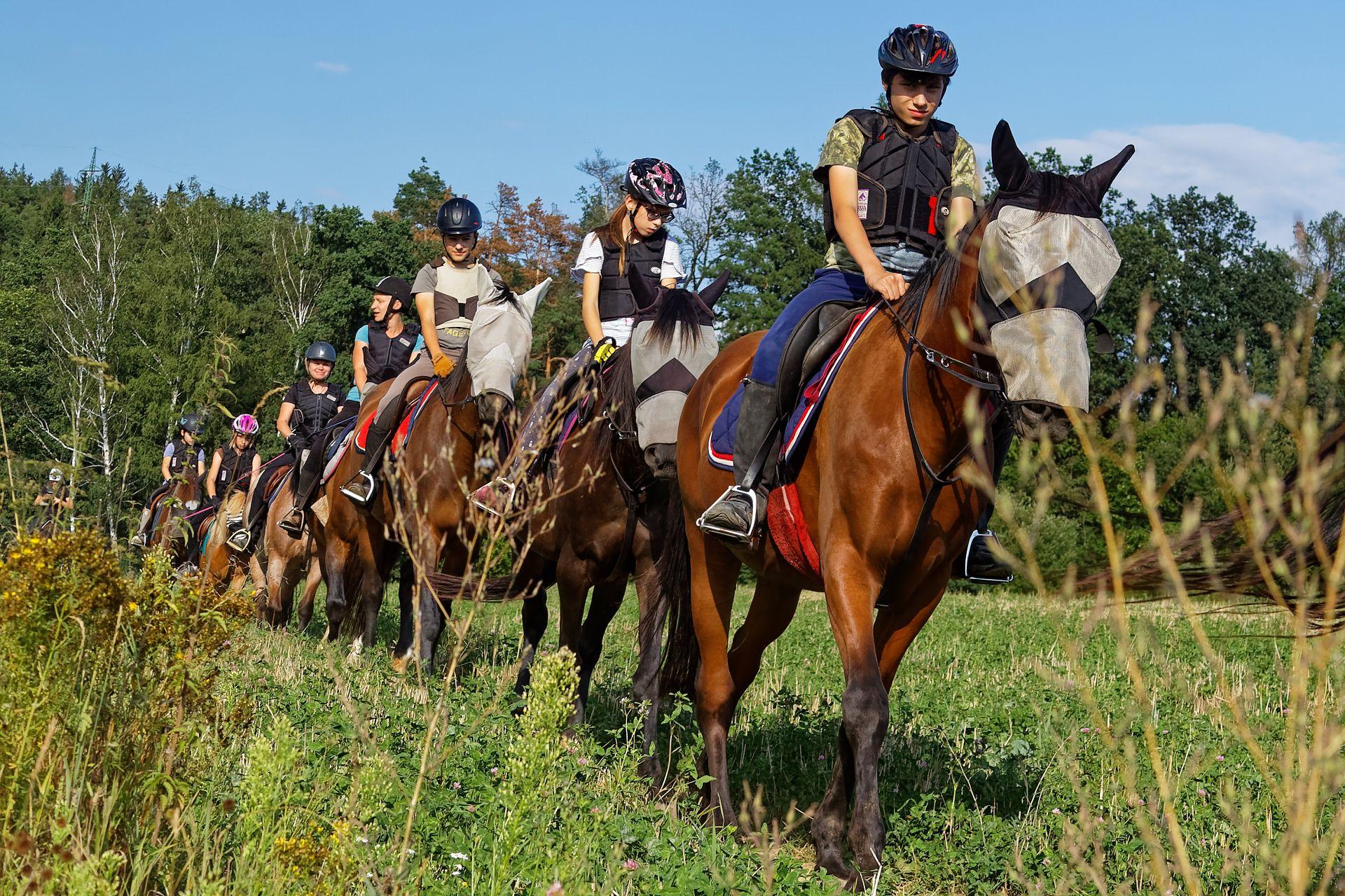 Více akcí, více koní, více instruktorů...